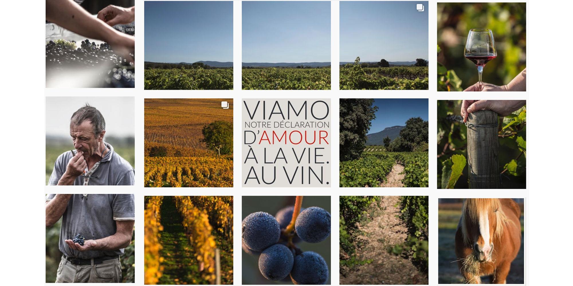 Viamo.fr | Le club pour épicuriens modernes