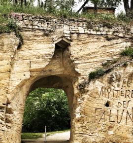 TOP 12 des choses à faire autour de Saumur | Dodo, resto, vin et chevaux